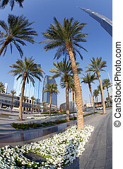 Dubai street with palm trees in UAE - Dubai street with palm...