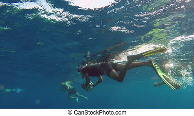 People snorkelling with cameras underwater swim to take...