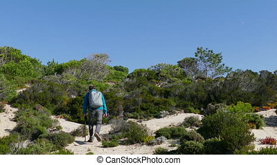 A Man with Backpack Walking on Forest Trail, view from the...