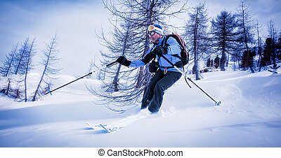 Man skiing in powder snow in a snowy woods.