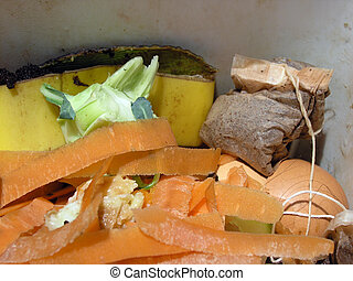 Composting food scraps - Collecting Biodegradeable Food...