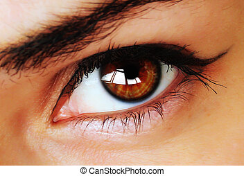 Brown eye with makeup - Hypnotic beautiful brown eye with...