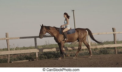 Young woman riding a horse on a lunging rein - Young woman...