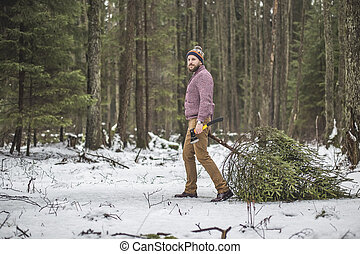 Young man is caryying christmas tree in the wood -...