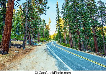 Highway Through Sierra Nevada Mountains in California,...