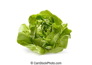 Fresh iceberg salad isolated on white background