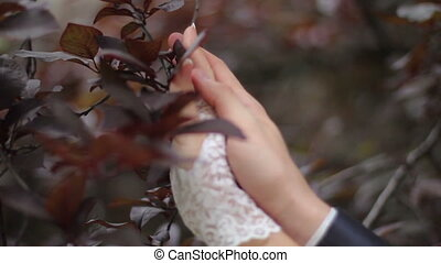 tenderness - hands together in love slip through the leaves...