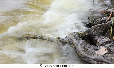 River bank with roots - Sandy river bank with waves with...