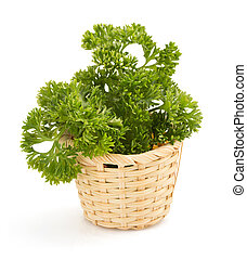 parsley spice isolated on white