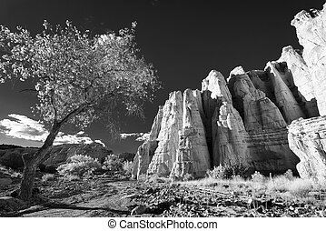 """""""The White Place"""" - Unique sandstone hills bathed in late..."""