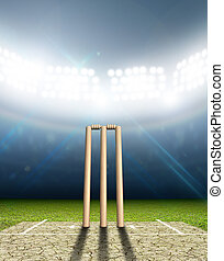 Cricket Stadium And Wickets - A cricket stadium with cricket...