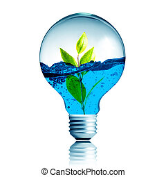 Green eco energy concept, plant growing inside the light...