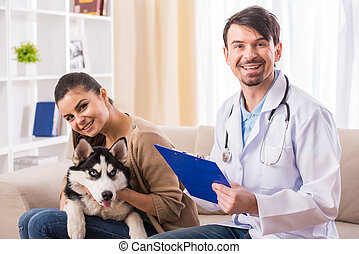 Veterinarian - Young woman with her dog Husky on a visit to...