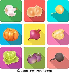 set of icons on a theme vegetables