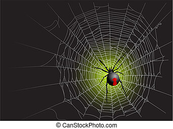 Spider web - Halloween spider web background. Vector...