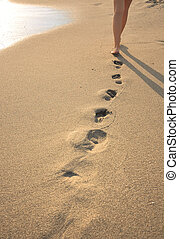 beachwalk with footprints - Human legs. Beautiful woman...