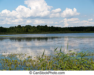 Beauty landscape with lake in summer day