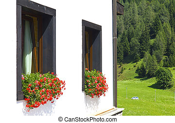 Sauris - Flowery windows in Sauris above, Carnic Alps,...