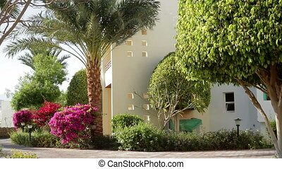 Hotel facade in Egypt With palm trees