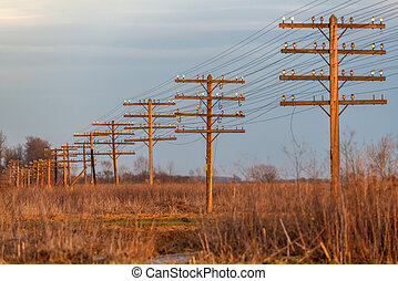 posts - electric posts on sunset background