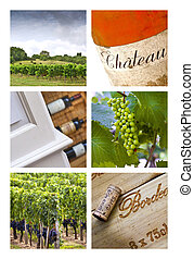 Viticulture - Wine and viticulture on a collage