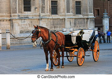 Spanish Horse and Cart - Traditional Horse and Cart at...