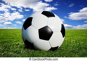 soccer ball on grass