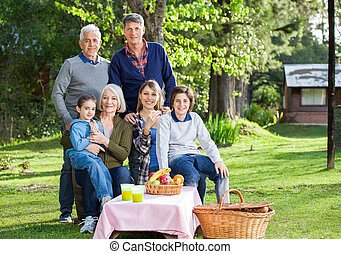 Multi Generation Family Enjoying Picnic In Park - Portrait...