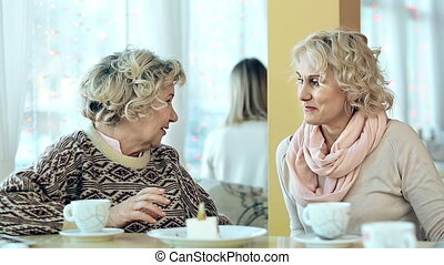 Joyous Discussion - Waist up shot of mid-aged and senior...