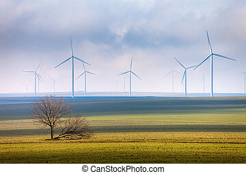 Tree and wind power