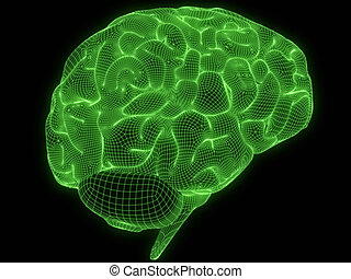 wire brain - 3d rendered illustration of a green human brain