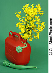 Biodiesel - Red jerrycan with yellow blooming rape over...