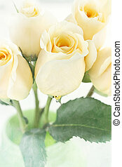 Long Stem Yellow Roses - Long stem yellow roses in a green...