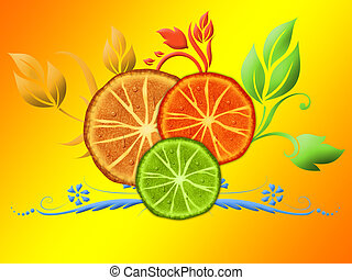 Citrus slices on the orange background