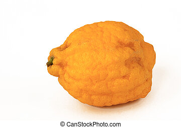 Citron (Citrus medica) isolated against a white background