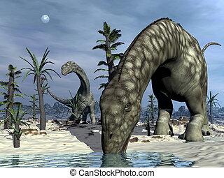 render,  -, Dinosaurio,  argentinosaurus, bebida,  3D
