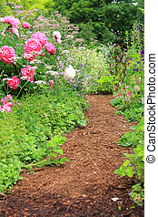 Garden path - Pretty path in an english cottage garden.