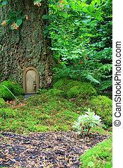 Fairy tale house - Littel fairy tale door in a tree trunk.