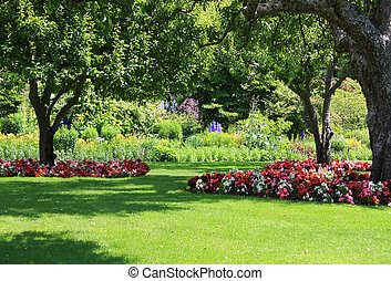 Park garden - Beautifully manicured park garden in summer.