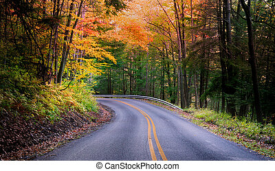 Beautiful Autumn Drive - Nice road through deep forest in...