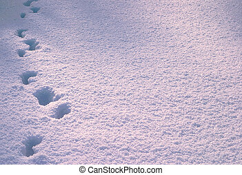 Footprint in deep snow Russia, winter