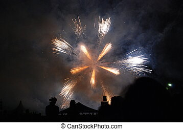 Fireowork with silhouette people - A rounder firework, with...