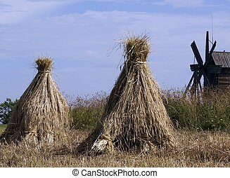 Field with sheaves of hay Russia - Field farm with sheaves...