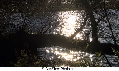 sunlight sparkling on lake water - summer evening sunlight...