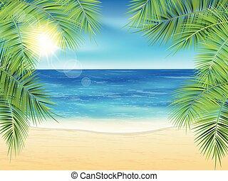 Sand beach.