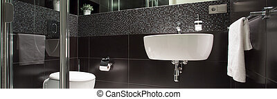 Black and white luxurious bathroom - View of black and white...