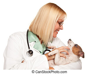 Attractive Female Doctor Veterinarian with Small Puppy...