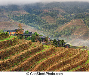 Rice terraces rice paddies Asia peasant village in mountains...