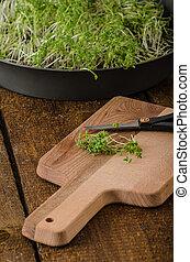 Home grown microgreens, watercress, no chemicalsScrambled...