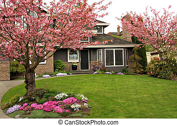 Home - Beautiful home with blossoming cherry trees.